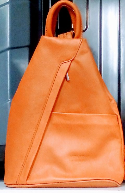 The Soft Leather Backpack Shoulder bag